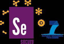 secure_logo