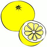 FEBRUAR 2020 – 4. TEDEN
